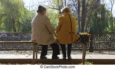 Senior Friends Talking In The Park
