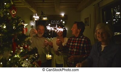 Senior friends with sparklers next to Christmas tree having...