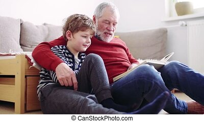 Senior grandfather with a small grandson at home reading a...