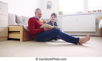 Senior grandfather with a small grandson at home reading a book.