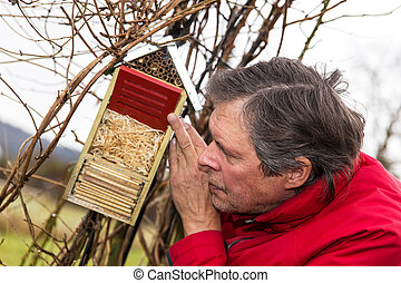 senior is watching a bug hotel