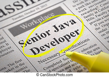 Senior Java Developer Vacancy in Newspaper. Job Search ...