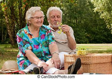 senior kobl, picknicking, parken
