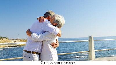 senior koppel, omhelzen, elkaar, dichtbij, kust, 4k