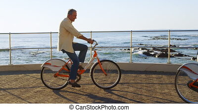 senior koppel, rijdende fiets, op, promenade, 4k