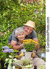 senior koppel, werkende , in de tuin