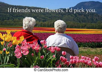 Senior ladies and tulips - Two senior ladies seated outside,...
