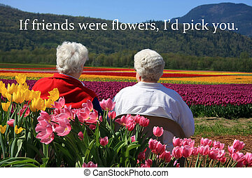 Senior ladies and tulips - Two senior ladies seated outside...