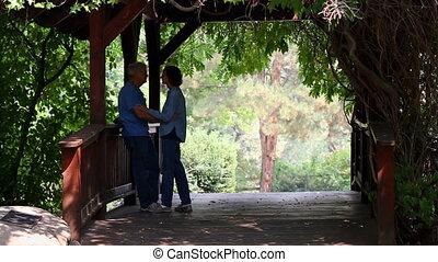 Senior Lovers On Footbridge