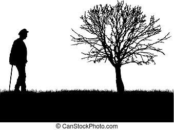 senior, ludzie., .silhouette