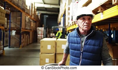 Senior male warehouse worker pulling a pallet truck. Copy space.