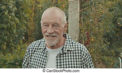 Senior man gardening in the backyard garden. - Happy healthy...