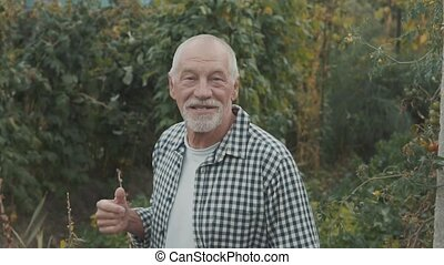 Senior man gardening in the backyard garden. - Happy healthy...