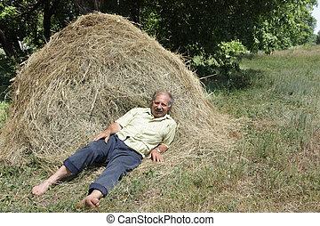 Senior man in a haystack