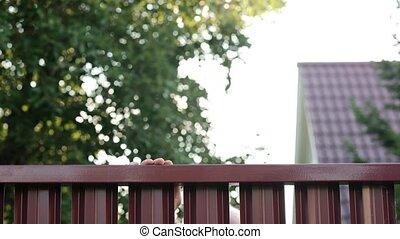 Senior man looking through fence spying on his neighbor....