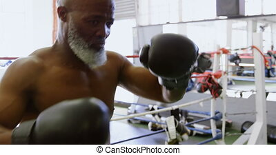 Senior man practicing boxing on the punching bag 4k -...