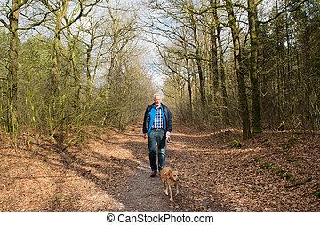 Senior man walking dog in forest - Senior man walking his...