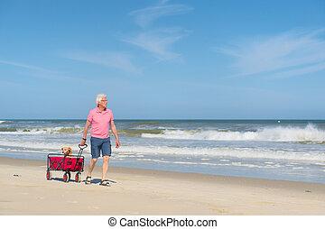 Senior man walking with dog at beach - Senior man walking...