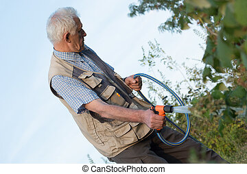 Retired gardener watering the garden with hose.