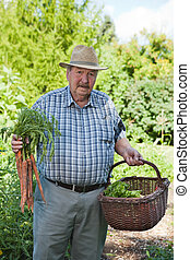 Senior Man with Basket of Vegetables