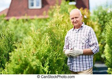 Senior Man Working with Plants in Garden