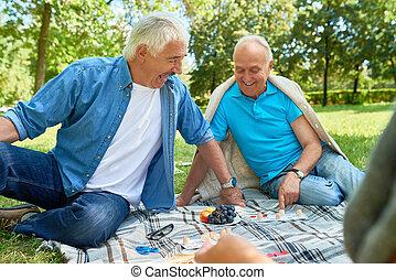 Senior Men Enjoying Games in Park