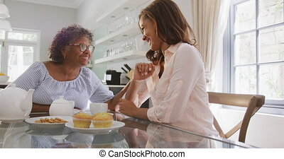 Senior mixed race woman drinking tea with her daughter in ...