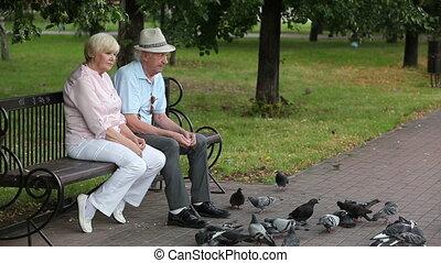 Lovely senior couple feeding pigeons in the park