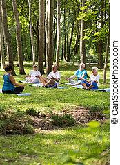 Senior people having yoga in a park
