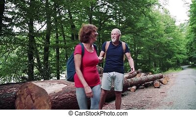 Senior tourist couple with backpacks walking in forest in nature, hugging.