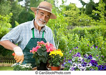 senior, trädgårdsarbete, man