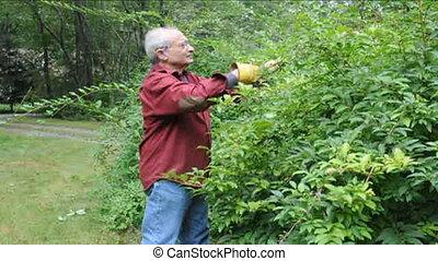 senior using shears garden