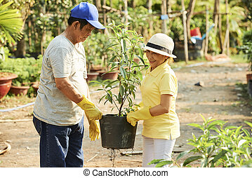 Senior with tree in pot