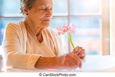 Senior woman - Beautiful senior woman holding a pink flower.