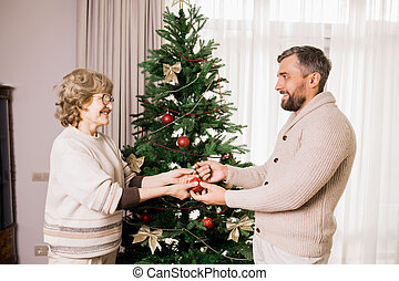 Senior Woman Decorating Tree with Son