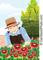 Senior woman gardening - A vector illustration of beautiful...