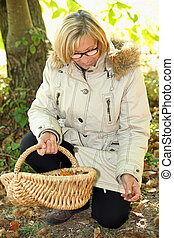 senior woman gathering hazelnuts