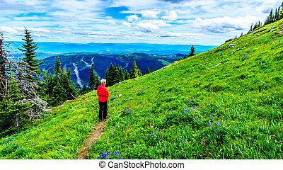 Senior Woman hiking through the Alpine Meadows of Tod Mountain