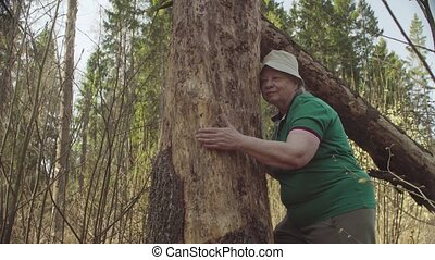 Senior woman in the forest hugging a damaged tree. Nature...