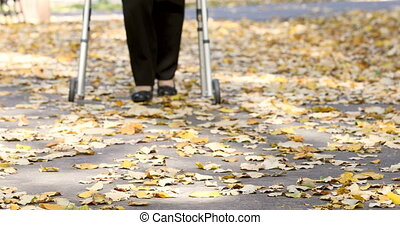 Closeup of senior woman legs walking with walker in autumn park. The person comes in focus.