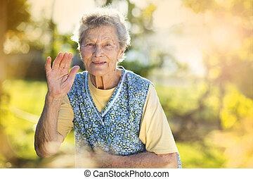 Senior woman - Portrait of senior woman in apron in the...
