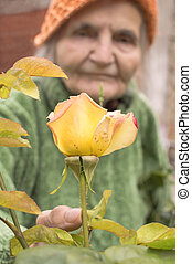 Senior woman with garden roses.