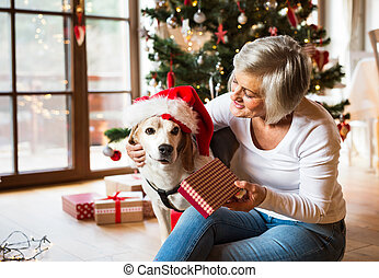 Senior woman with her dog opening Christmas presents. -...