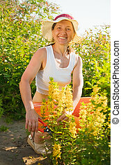 woman with loosestrife