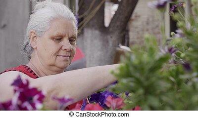 senior woman works at her garden