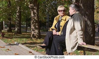 Senior women discussing something on the bench in the city park
