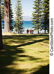 Senior Women Enjoying Forest Lake View from Bench