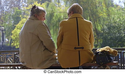 Senior women friends talking on the bench in the autumn city park