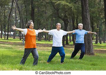 seniores, fazendo, ginástica, parque