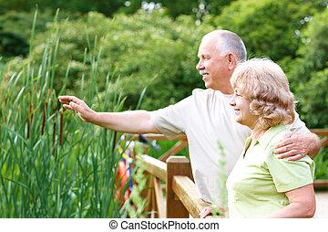 seniores, par, idoso